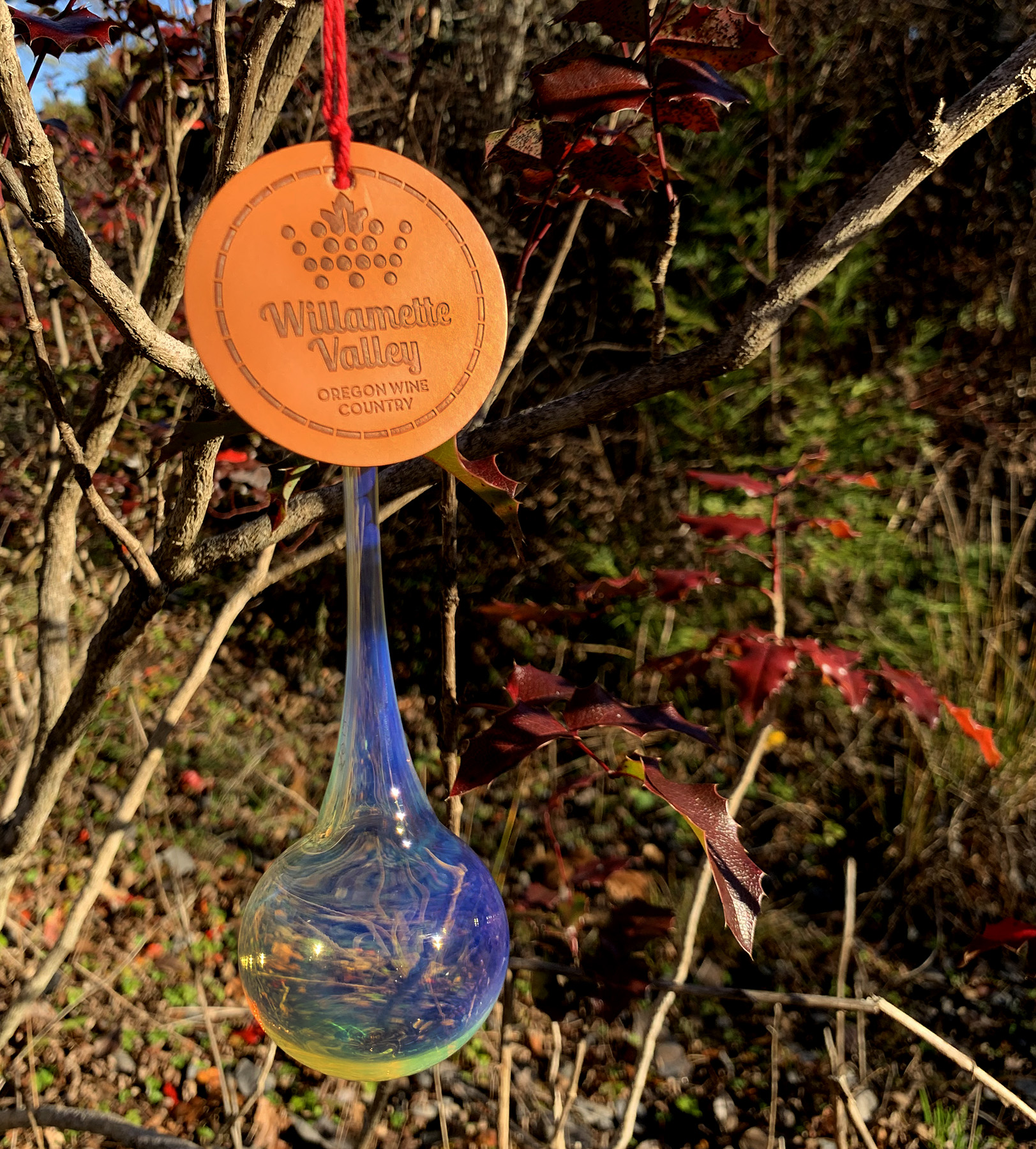 An ornament hangs from a tree for the 2019 willamette wilderness ornament hunt.